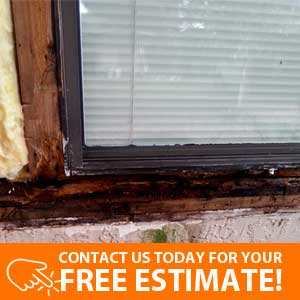 Wood Rot Repairs Services